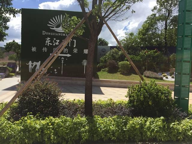 东江豪门实景图