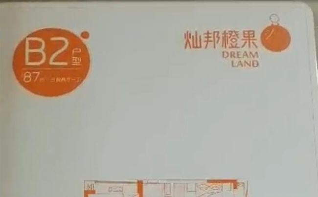 灿邦橙果大厦B2户型87平